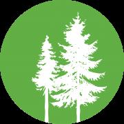 Tree Logo Green_White