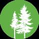 cropped-Tree-Logo-Green_White.png
